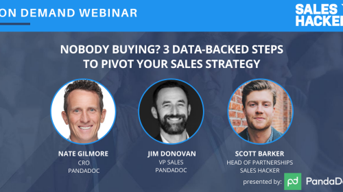 Nobody Buying? 3 Data-Backed Steps to Pivot Your Sales Strategy