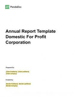 Annual Report Template – Domestic for Profit